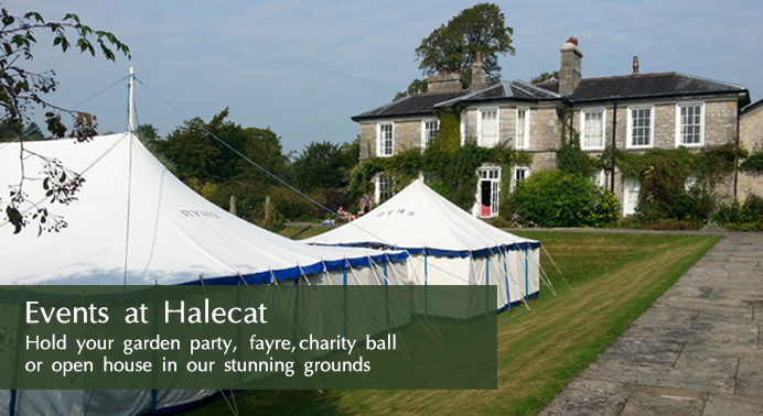 Events at Halecat
