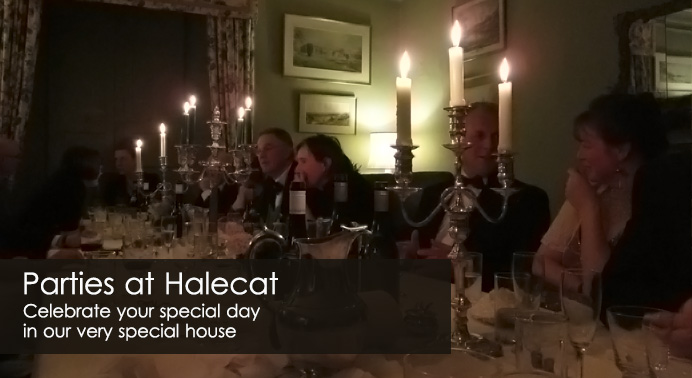 Parties at Halecat House